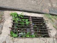 Indicação solicita uma vistoria nas ruas de nossa cidade, a fim de verificar e providenciar o desentupimento dos bueiros captadores da água pluvial.