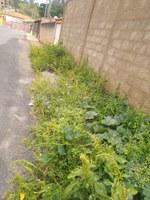 Indicação pede a limpeza e capina em todas as vias públicas do Bairro Jardim Sion.