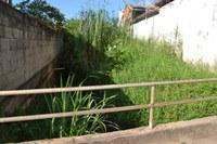 Indicação pede a limpeza e retirada do mato no trecho do Ribeirão Santo Antônio, que passa sob e ao lado do Bairro Xororó.