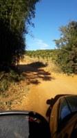 Indicação pede a limpeza para retirada do mato e roçagem das árvores às margens das estradas rurais Barragem e do Palmelinha