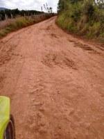 Indicação pede a poda e limpeza das árvores e retirada do mato, bem como a devida manutenção da estrada rural da Lavrinha