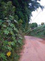 Indicação pede a roçagem do mato e limpeza em toda a extensão da Rua Marechal Deodoro, ate as Três Bicas