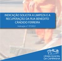 Indicação solicita a limpeza e a revitalização da Rua Benedito Cândido Ferreira