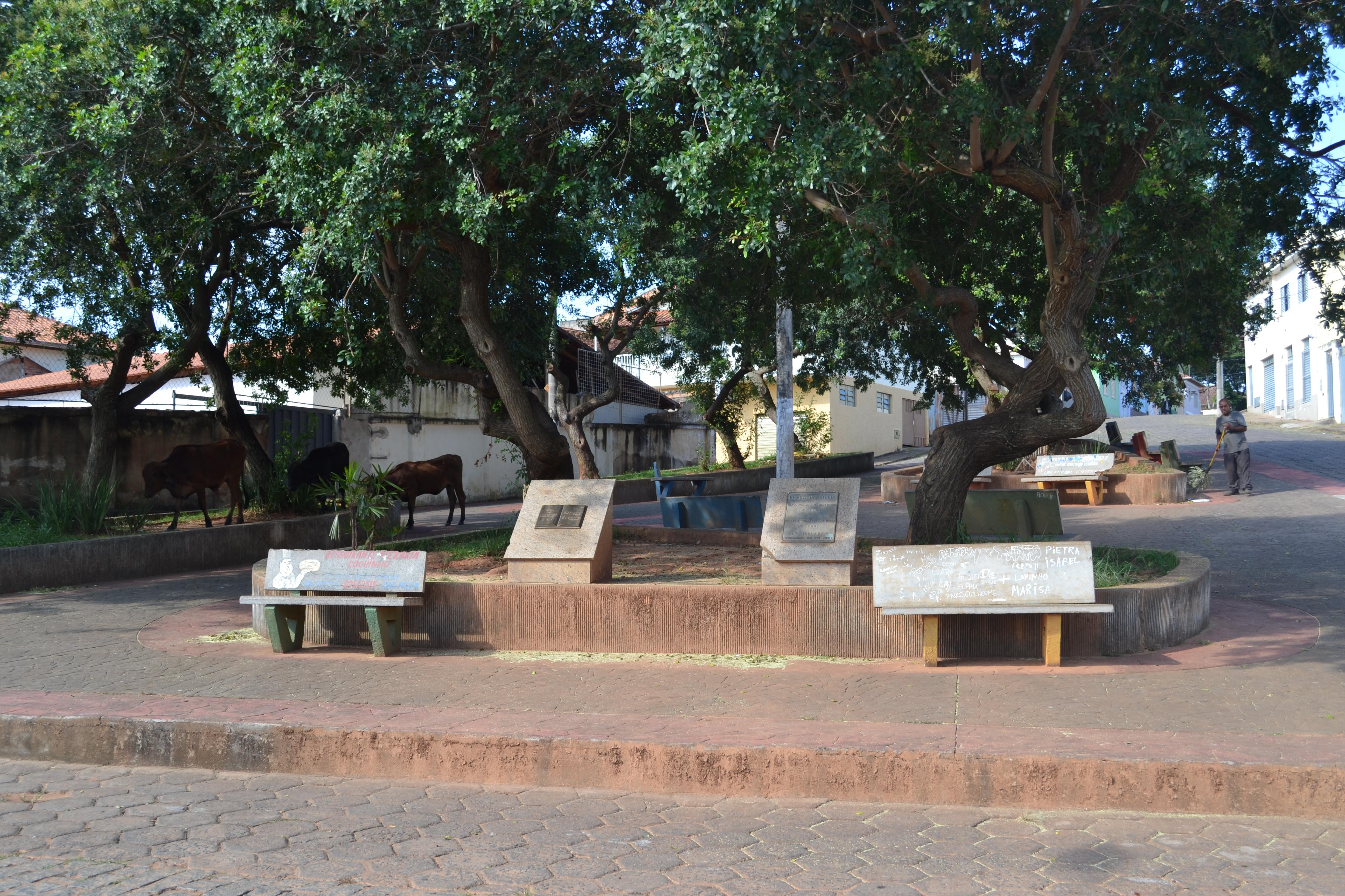 Indicação Solicita construir uma rampa na Praça da Bíblia