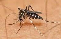 Indicação Solicita medidas prioritárias no combate aos mosquitos transmissor do ZIKA VÍRUS