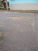 Indicação solicita providenciar a pintura de todas as faixas de pedestres e dos redutores de velocidade